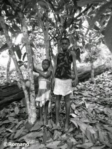 Child Slaves in West African Cacao Plantation