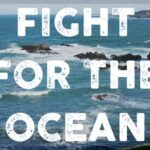 Fight for the Oceans Day!