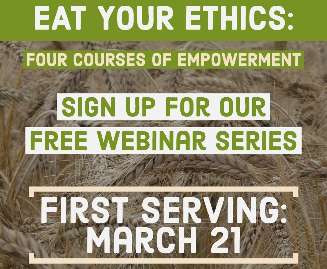 Sign Up For Our Webinar