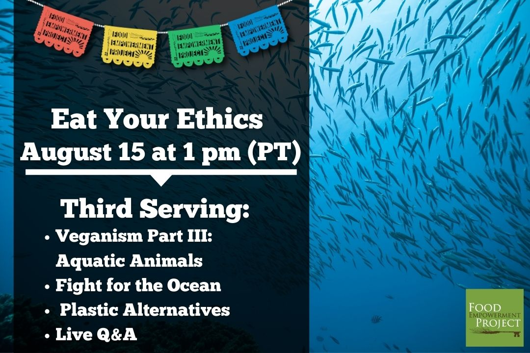 Register Now! Eat Your Ethics: Third Serving