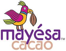 Mayesa_logo small (2)